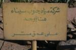 Egypt 261